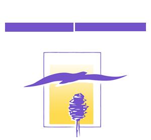 Logo Maison du bouleau blanc